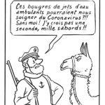 Des anticorps de lama pourraient aider à vaincre le coronavirus